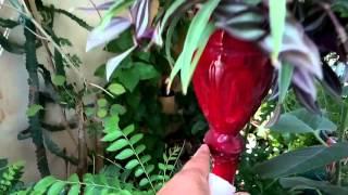 20 - How to make Planters from bottles (Hindi/Urdu ) Jhansi - 6/5/16
