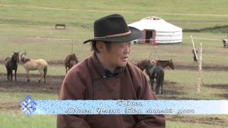 mongol mori tod manlai uyach onon