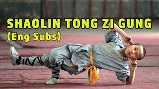 Wu Tang Collection - SHAOLIN TONG ZI KUNG Cantonese eng sub