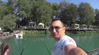 белая рыба на сбирулино