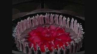 Shemale - North Sea Funeral