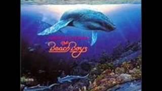 The Beach Boys - Lahaina Aloha - 1992