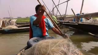 মধুমতী নদীর শিক্ষিত মাঝি ( The educated boatman of Modhumati River)