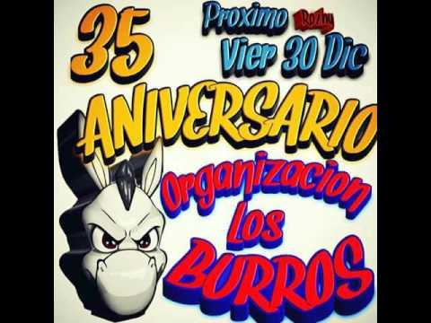 sonido discomovil canada danza con lobos aniversario org burros santiago acahualtepec