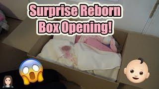 SURPRISE! Reborn Baby Box Opening! | Kelli Maple