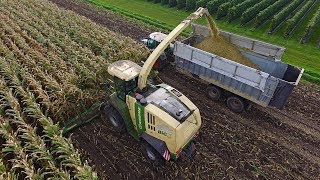 12 row Krone Big X 770 Acre Eater | Bekkers - Erp | Maize harvest 2017
