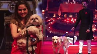 Bollywood With Their Pets Dog & Cats