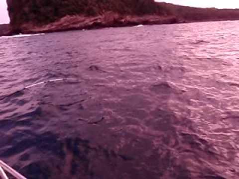 Topwater fishing in Punta Mita with Capt. Lora