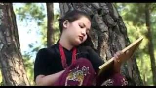 jambu kasmir ma by abiral poudel chitwan