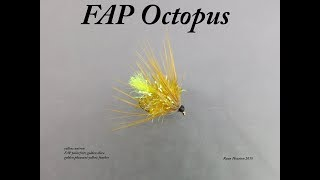 TYING THE FAP OCTOPUS WITH RYAN HOUSTON 2018