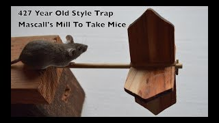 427 Year Old Style Mouse Trap In Action - Mascall