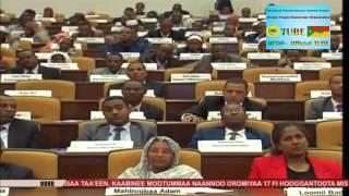 Caffeen Oromiya Obbo Lammaa Magarsaa  Pireezidaantii MNO gochuun filate