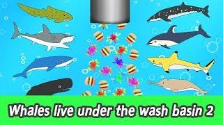 [EN] Whales live under the wash basin 2, kids animals animation, whales adventureㅣCoCosToy