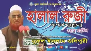 Bangla Waz Halal Ruji Somporke Bangla lecture - Allama Nurul Islam Olipuri - one music islamic
