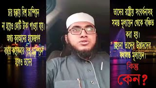 Mufti Rafi Bin Munir || বিশ্বজয়ি হাফেযে কোরআনদের যথাযথ মর্যযাদা দেয়া হোক