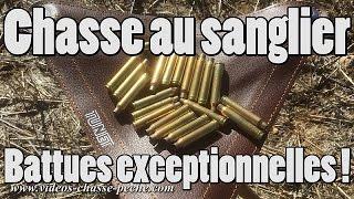 Chasse au sanglier, battues maïs exceptionnelles - 25 tirs, charge sanglier...