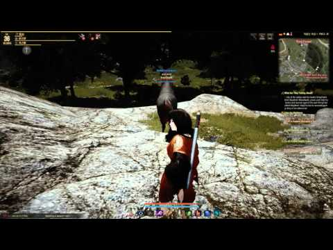it's Hard as fuck to tame a horse in black desert