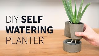DIY self watering concrete planter | How to