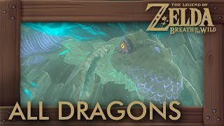 Zelda Breath of the Wild - All Dragon Locations & Shrine Quests