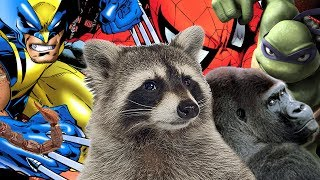 20 Comic Book Characters Inspired by Animals