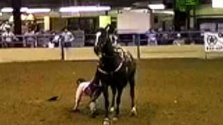 Woman Crushed By Horse