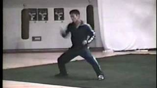 P2 Jason Yee demonstrates Nan-Quan (Southern fist) hand form