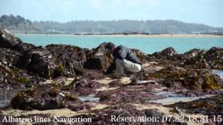 Albatros film drone Saint -Malo
