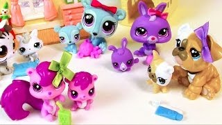 LPS Mommies Series Mommy and Baby Littlest Pet Shop HAUL Opening toy review