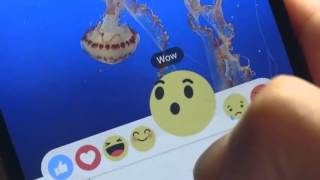 Facebook launching A more Expressive Like button