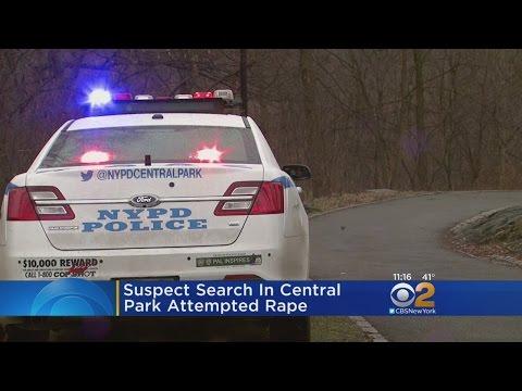 Central Park Robbery, Sex Assault Attempt