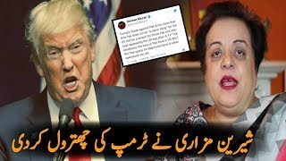 PTI Shireen Mazari Best Reply To Donald Trump   Trump Statement On Pakistan 2018