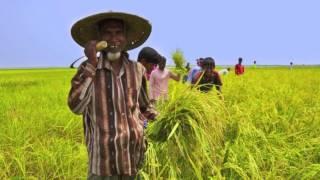 জাতীয় সংগীত - আমার সোনার বাংলা National Anthem of Bangladesh ( BD ) Amar Sonar Bangla