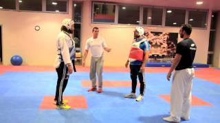 Taekwondo&Rugby Castrogiovanni, Canale, Basile e Molfetta.