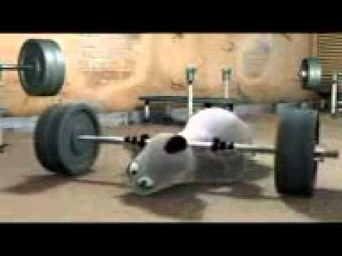 Xxx Mp4 Bernard Bear The Gym 3gp 3gp Sex