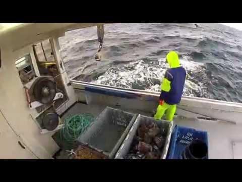 GoPro Lobster Fishing HD