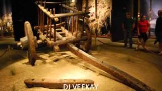 USHA UTHUP BAPPI LAHRI MIX BY DJ VEEKAY