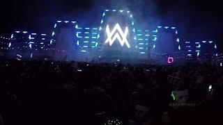 alan walker the spectre concert at edc 2017