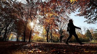 تشرين الثاني/نوفمبر شهد ارتفاعاً بنسبة ثاني أوكسيد الكربون وفي درجة الحرارة…
