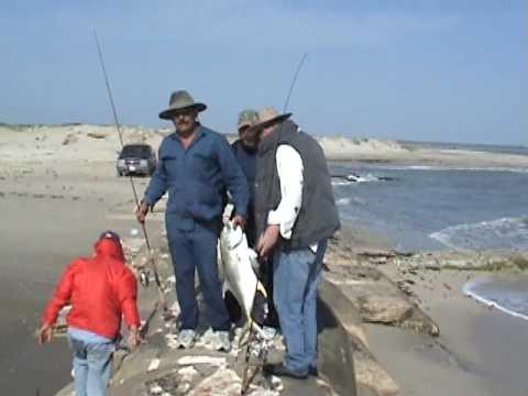 pesca de jurel en la pesca tamaulipas