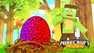 The MYSTERY DRAGON EGG! - Minecraft Dragons