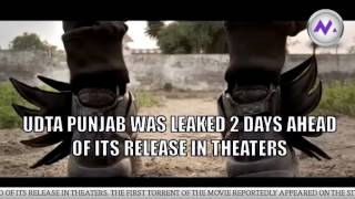 Udta Punjab leak: Torrent site owner arrested