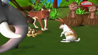Moral Stories in Hindi For Children | हिंदी नैतिक कहानियाँ | Hindi Animal Stories Collection Kids
