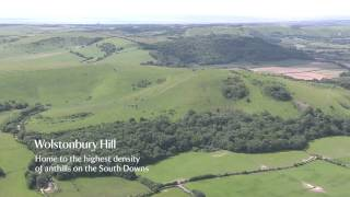 Take an aerial trip around the Devil's Dyke estate