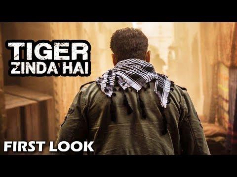 Xxx Mp4 Salman का Tiger Zinda Hai में ये होगा Entry Shot 3gp Sex