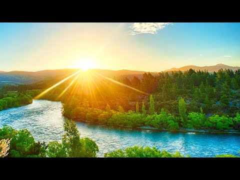 Relaxing Music for Stress Relief. Calm Music for Meditation Healing Therapy Sleep Spa Yoga