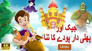 Jack and Beanstalk In Urdu - Urdu Story - Stories in Urdu - 4K UHD - Urdu Fairy Tales