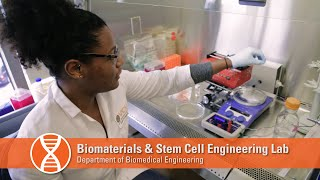 Biomaterials & Stem Cell Engineering Lab