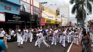 Professor Bem-te-vi Brasileirão de capoeira 18° na cidade de jales são Paulo