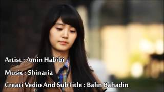 Amin habibi    _  shinaria