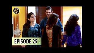 Teri Raza Episode 25 - 21st Dec 2017 - Sanam Baloch & Shehroz Sabzwari - Top  Pakistani Drama